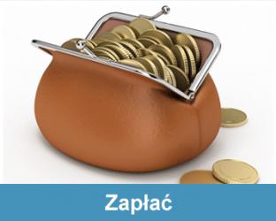 Taxpol | Zapłać